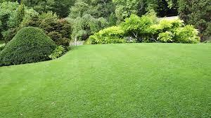 welcome redengine lawn landscape
