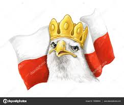 cartoon eagle and polish flag head in crown illustration for