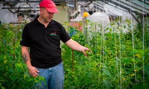 edible ornamentals in beds bedford groupon