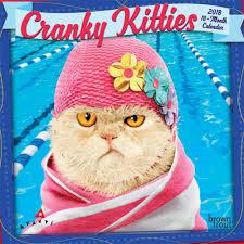 Grumpy Cat Mini Wall Calendar - avanti cranky kitties 2018 7 x 7 inch monthly mini wall calendar