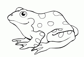 free frog coloring pages kids ad58l