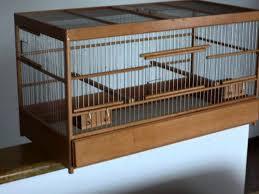 gabbie per gabbie di legno per canarini