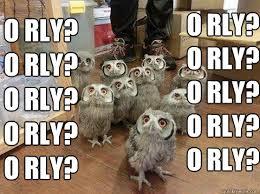 Meme Orly - herd of skeptical owls memes quickmeme