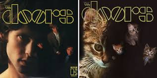 cat photo album cat album covers replace iconic designs with adorable kittens