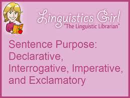 types of words paronyms homophones homographs homonyms