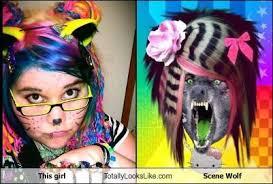 Scene Wolf Meme - this girl totally looks like scene wolf totally looks like