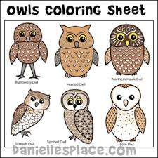 printable owl art owl crafts and learning activities for kids