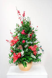boxwood trees u0026 more angelo floral is now sunset floral design