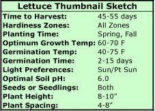 Fall Vegetable Garden Ideas by 123 Best Square Foot Gardening U0026 Veg Gardening Images On Pinterest