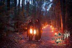 Vermont forest images The haunted forest williston vermont jpg