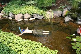 Water Rock Garden by Why Rocks And Gravel For Natural Pond Garden Forums 2017 With Rock