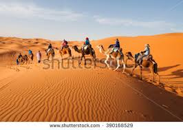 morocco stock images royalty free images u0026 vectors shutterstock