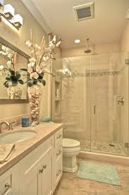 Small Bathrooms Remodeling Ideas Best 25 Budget Bathroom Remodel Ideas On Pinterest Cool For Small