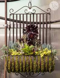 Wrought Iron Wall Planters by Garden Inspiration From Your Local Nursery