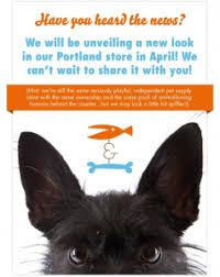 designed pets archives fish bone urban