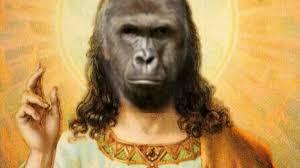 Monkey Jesus Meme - it s official memes are now more popular than jesus joe co uk