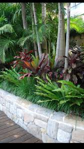 Good Backyard Trees by 226 Best Hawaiian Landscaping Images On Pinterest Landscaping