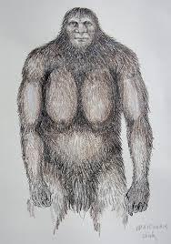 tribal bigfoot u2013 hancock house publishers