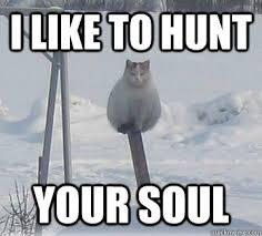 Demon Memes - chilly demon cat memes quickmeme