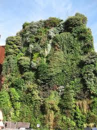 patrick blanc u0027s vertical garden in madrid buildipedia