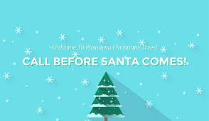 pasadena christmas trees come visit us