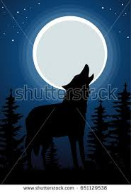 wolf howling moon forest background stock vector 651129538