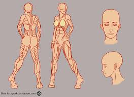 Female Anatomy Reference Seeing As My Eye Tutorial Was So Popular I U0027ve Decided To Make A