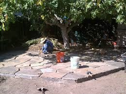 Patio Around Tree Flagstone Wilson Environmental Contracting
