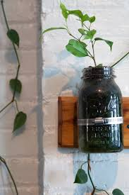 how to build a mason jar garden u2014 homestead brooklyn