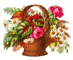 pencil drawing of flower basket flower bouquet clipart clipart