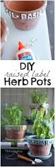 201 best home flowers and plants images on pinterest gardening