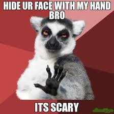 Meme Scary Face - hide ur face with my hand bro its scary meme chill out lemur