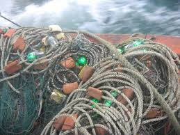 Lights Nets These Light Up Fishing Nets Could Save Sea Turtles Innovation