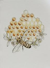 best 25 honeycomb tattoo ideas on pinterest tattoo drawings