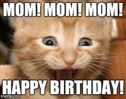 56 best happy birthday cat meme images on pinterest happy birthday
