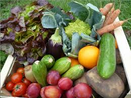 organic fruit delivery fruit and veg home delivery organic vegetable deliveries