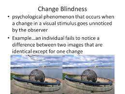 Color Blindness Psychology Ap Psychology 2 3 Sensation And Perception Sensation Process By