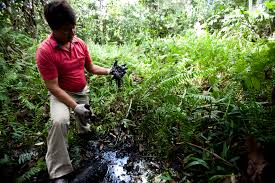amazon rainforest native plants indigenous groups threaten to physically block drilling in