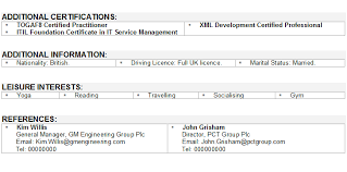 Modern CV Sample   Curriculum Vitae Builder