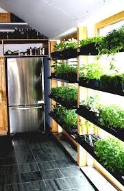 indoor vegetable garden gardening and patio creative house design