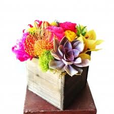 flower delivery wichita ks beards floral design succulents flower delivery wichita ks