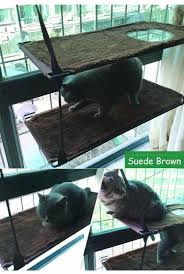 Resting Space Mounted Cat Hammock Bed Seat Sunny Cat Resting Sunshine Window