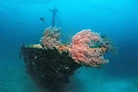 alif ari atoll travel vacation tour