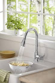 danze melrose kitchen faucet sink u0026 faucet beautiful danze kitchen faucet beautiful danze