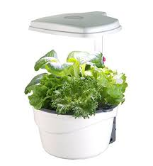 9 best indoor vegetable growers and herb planters for 2017