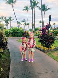 Hawaii Travel Potty images Maui trip recap the southern style guide jpg