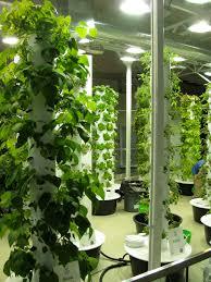26 indoor garden chicago for more cool interior design ideas 12