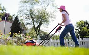 Gardening Tips For Summer - gardening tips for june and july telegraph