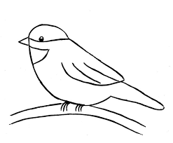 coloring fabulous simple bird drawing birds coloring