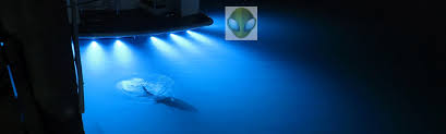 installing led lights on boat lifeform led underwater led boat lighting led dock lights